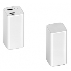 Powerbank Pillar Led 5000 - 12.000 mAh met logo